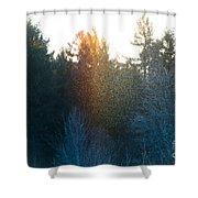 Rainbow Sparkles Shower Curtain