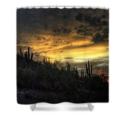 Rainbow Sunset  Shower Curtain