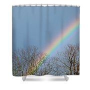 Rainbow Through The Tree Tops Shower Curtain