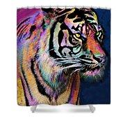 Rainbow Tiger Shower Curtain