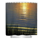 Rainbow Waters Shower Curtain