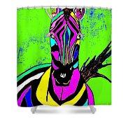 Rainbow Zebra 2 Abstract Shower Curtain