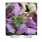 Raindrops On Purple And White Flowers Shower Curtain