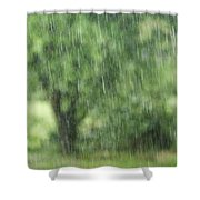 Rainfall Shower Curtain