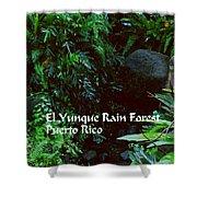 Rainforest Shower Curtain
