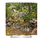 Rainforest Rock Slide Shower Curtain