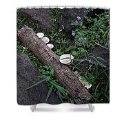 Rainforest Vegetation Moss And Fungi Shower Curtain