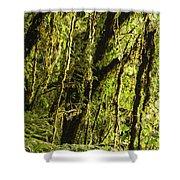 Rainforest Vines Shower Curtain