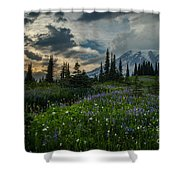 Rainier Abundance Of Flowers Shower Curtain