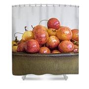 Rainier Cherries And Ceramic Bowl Shower Curtain