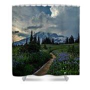 Rainier Meadows Thunder Skies Shower Curtain