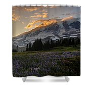 Rainier Purple Lupine Carpet Shower Curtain