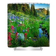 Rainier Wildflower Creek Shower Curtain