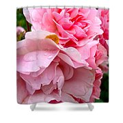 Rainy Day Roses Shower Curtain