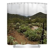 Rainy Desert Shower Curtain