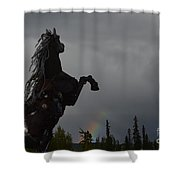 Raising Rainbows Shower Curtain