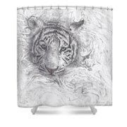 Rajah Shower Curtain