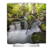Ramona Creek Shower Curtain