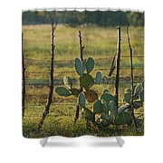 Ranch Cactus Shower Curtain