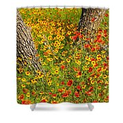 Ranch Wildflowers And Trees 2am-110522 Shower Curtain