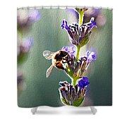 Random Lavender Sampling Shower Curtain