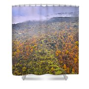 Raniy Days In Automn Shower Curtain