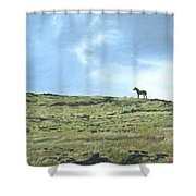 Rapa Nui Horse Shower Curtain