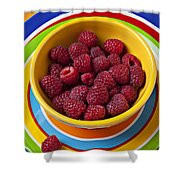 Raspberries In Yellow Bowl On Plate Shower Curtain