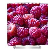 Homegrown Organic Raspberries, Chiloquin Oregon Shower Curtain
