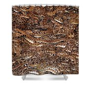Rattle Snake Round-up Shower Curtain