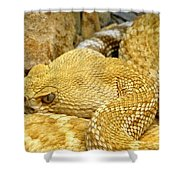 Rattler's Repose Shower Curtain
