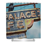 Raven And Palace Shower Curtain