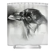 Raven Head Shower Curtain