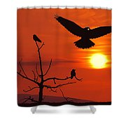Raven Maniac Shower Curtain