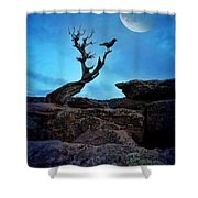 Raven On Twisted Tree With Moon Shower Curtain