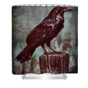 Raven Perched On A Post Shower Curtain