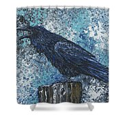 Raven Study 3 Shower Curtain