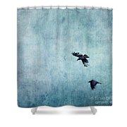 Ravens Flight Shower Curtain by Priska Wettstein