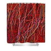 Raw Nerves Shower Curtain