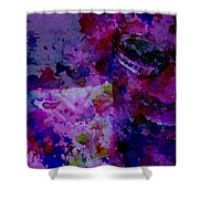Ray Charles 2 Shower Curtain