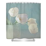Ray Of Beauty Shower Curtain