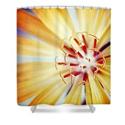 Rays Of Joy - S01-21at1c Shower Curtain