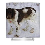 Razzle With Snowballs Shower Curtain