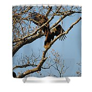 Reach For New Heights Shower Curtain