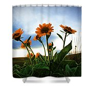 Reach To The Heavens Shower Curtain