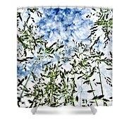 Reach To The Sky Shower Curtain