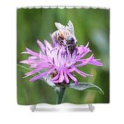 Reaching For Nectar Shower Curtain