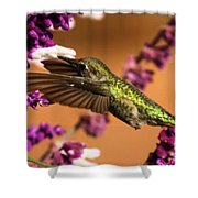 Reaching For The Nectar Shower Curtain