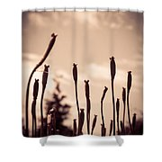 Flowers Reaching For The Sky Shower Curtain