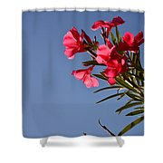 Reaching Out 30016 Shower Curtain